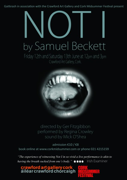 NOT I poster May 2015 A3